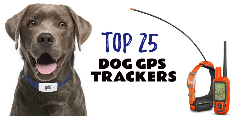 Photo of Dog GPS Tracker Collars