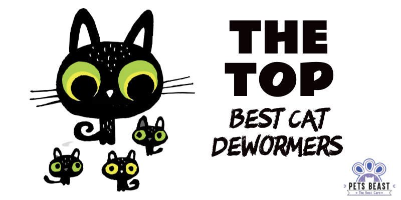 Photo of Best Cat Dewormers