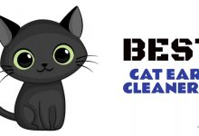 Photo of The 40 Best Cat Ear Cleaners of 2020 (Reviewed)