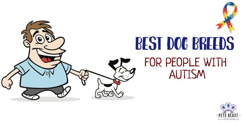 Best Dog Breeds For Autism