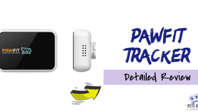 Photo of TECKNET Pawfit 2 GPS Tracker Review 2020