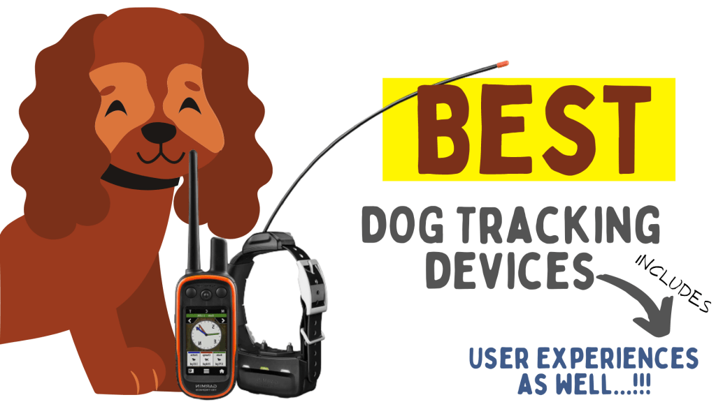 Best Dog Trackers